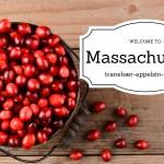 Massachusetts = tranebær-appelsinkompot