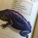 D for dyr – bøger til dyreglade børn