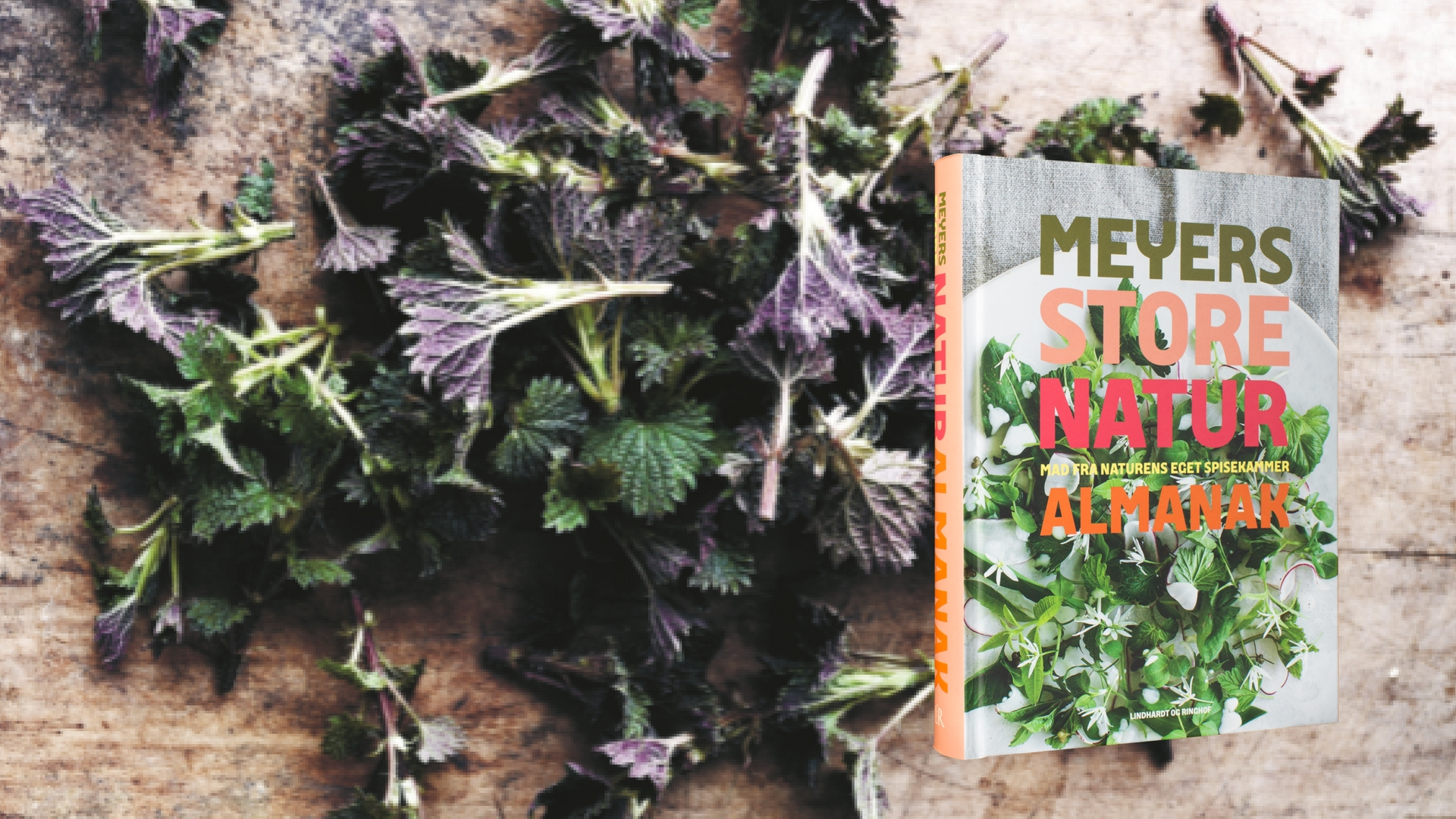 Meyer mad opskrifter almanak naturalmanak brændenælder