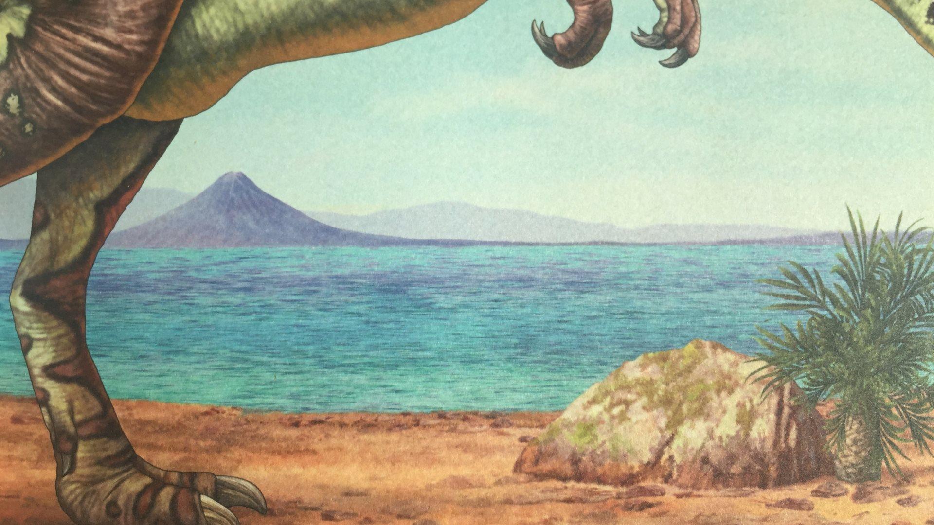 dinosaurer, supersaurus, fortidsdyr, børnebog, børnebøger