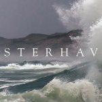 Vesterhavet – Danmarks vildeste natur fortalt og fotograferet