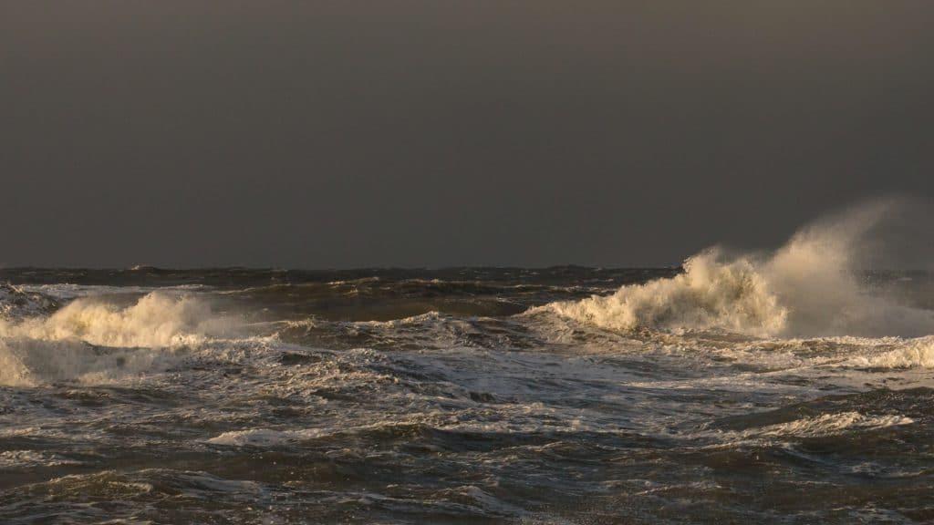 Jane Aamund, Vesterhavet