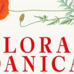 FORTÆLLINGEN OM FLORA DANICA – Bog ved en tilfældighed