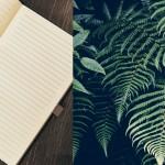 Stefan Ahnhem: Det skal jeg læse i min sommerferie