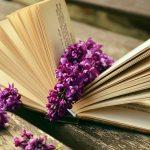 Kærlighedsromaner: 15 bøger at forelske sig i til sommer