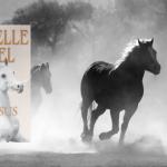 Læs om Danielle Steels historiske familiedrama Pegasus