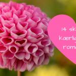 14 skønne kærlighedsromaner