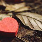 12 medrivende kærlighedsromaner på e-bog