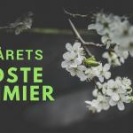 Forårets bedste krimier