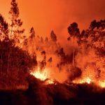 Fanget i et flammehelvede – en sand historie