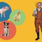 Lær om dyr med Sebastian Klein. Papbøger om dyr for de mindste