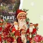Den store julegaveguide: De bedste bøger til mor