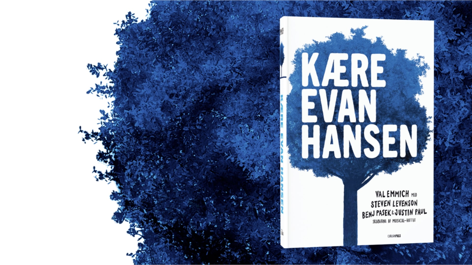 Kære Evan Hansen, musical, bog, teenager