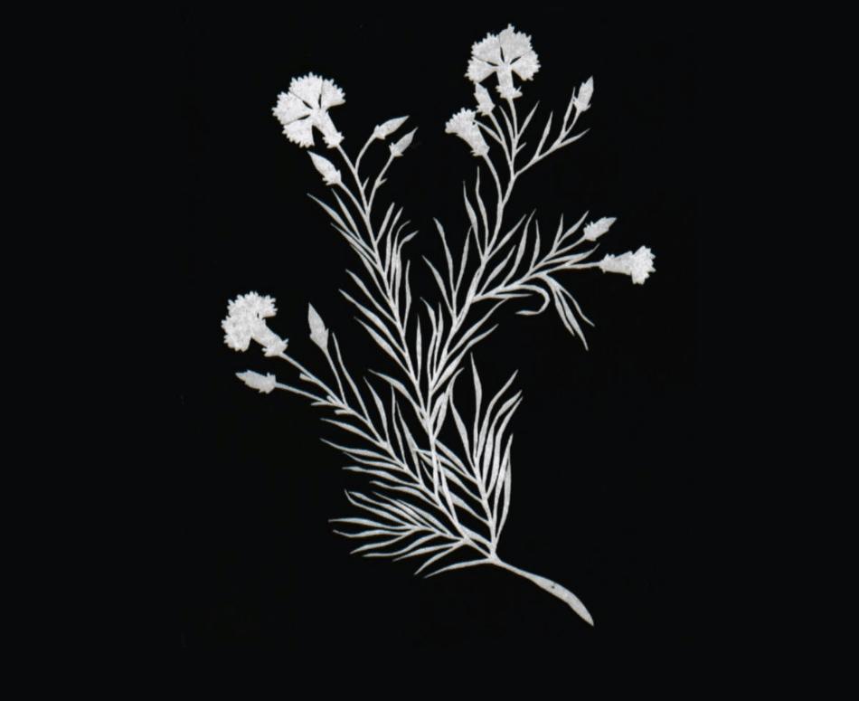 H.C. Andersen, papirklip, Johan de Mylius, billedkunst, HC Andersen