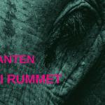 Om elefanten i rummet og modet til at handle på den