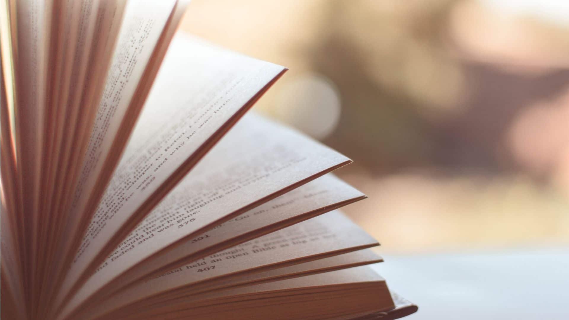 Bøger på over 500 sider