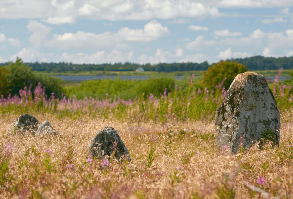 Udsigt til Tømmerby Fjord fra Højstrup gravplads.. Danmarks oldtid i landskabet.