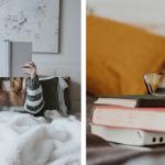 Brandvarme efterårsudgivelser – YA-bøger du skal glæde dig til