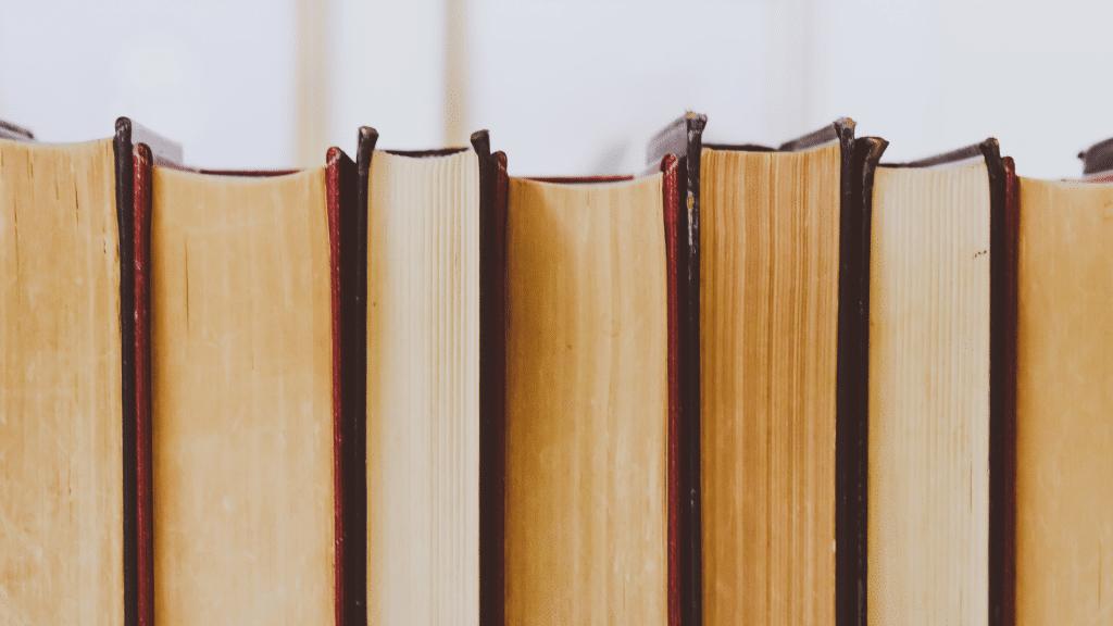 bogreol, ya, young adult, bøger, bog, ungdomsbog, ungdosmbøger, ungdomslitteratur