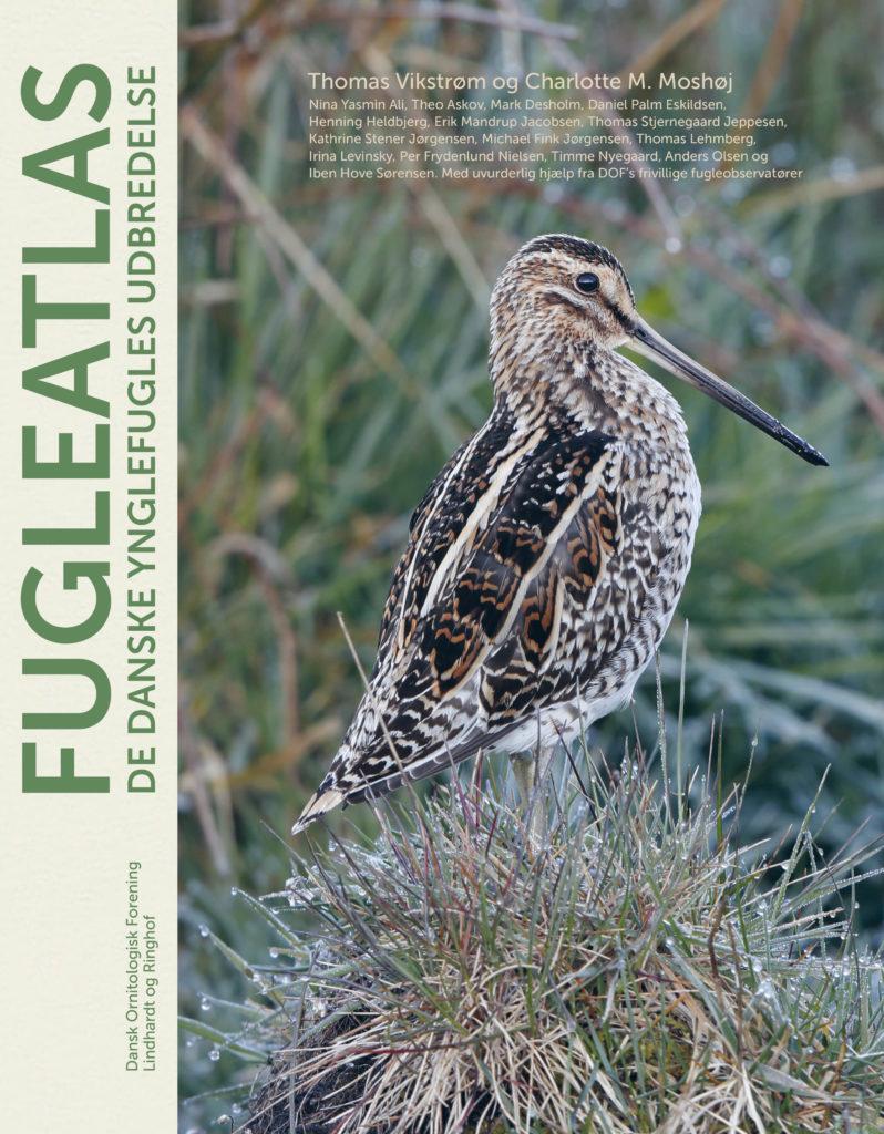 Fugleatlas, Thomas Vikstrøm, Charlotte Moshøj, Dansk Ornitolog Foreningen