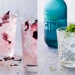 Sådan laver du den perfekte gin og tonic