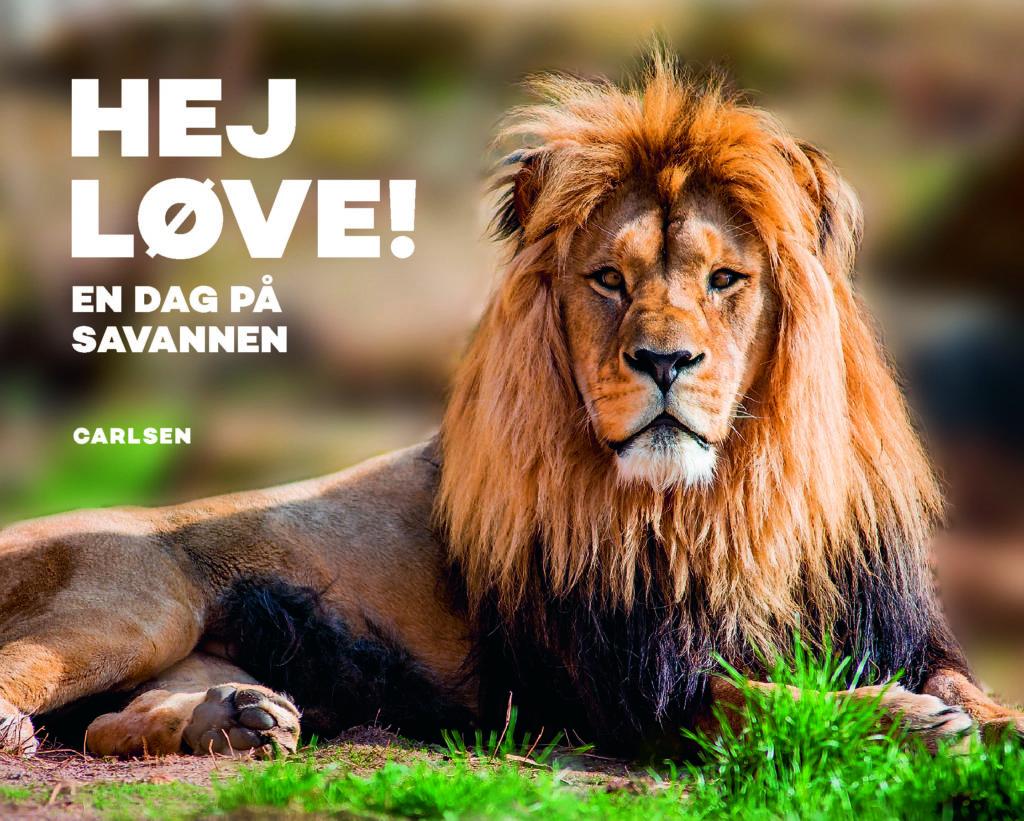 Hej, løve - En dag på savannen