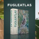 Velkommen til lancering af Fugleatlas