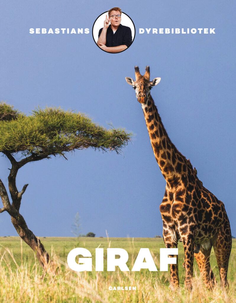 Giraf, Sebastians dyrebibliotek, Sebastian Klein