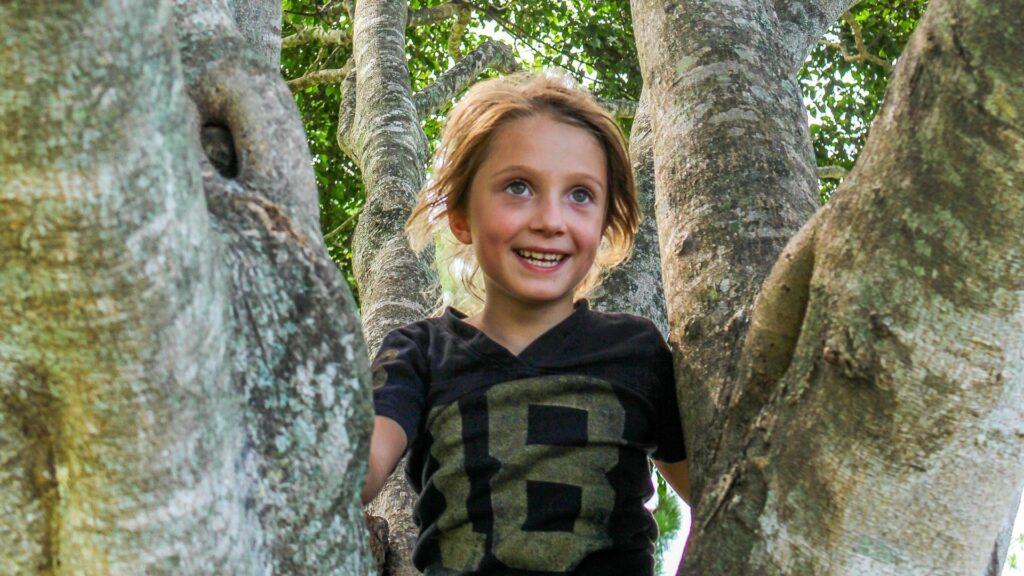 aktiviteter børn natur, leg i naturen med børn, bøger natur børn