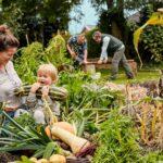 Tilbage til naturen – hjemme i din egen have