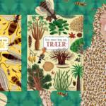 Den store bog om træer og bier bringer dit barn tættere på naturen