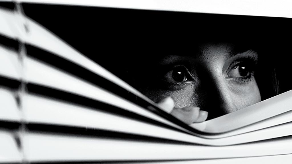 The woman in the window på Netflix. Læs om romanen Kvinden i vinduet her