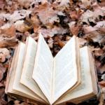 10 bøger du skal læse, når det bliver for koldt til rosé på terrassen