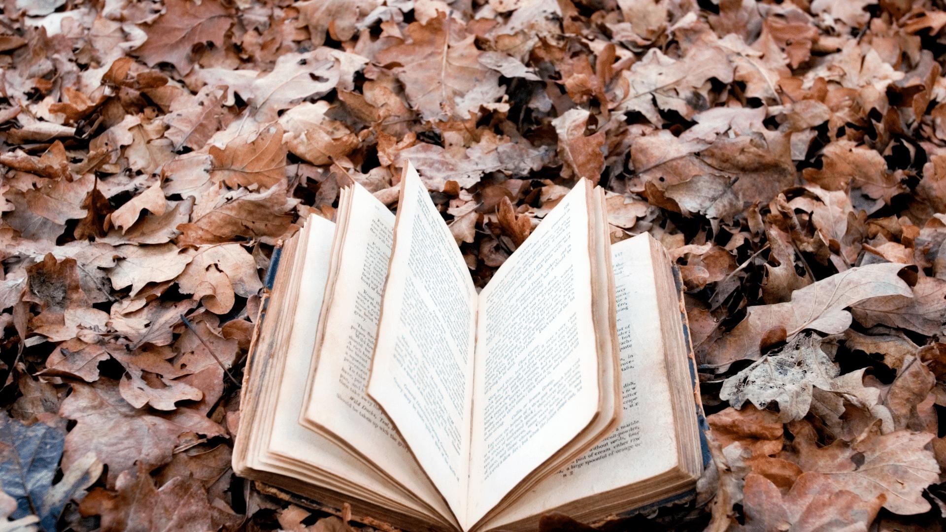 bøger du skal læse